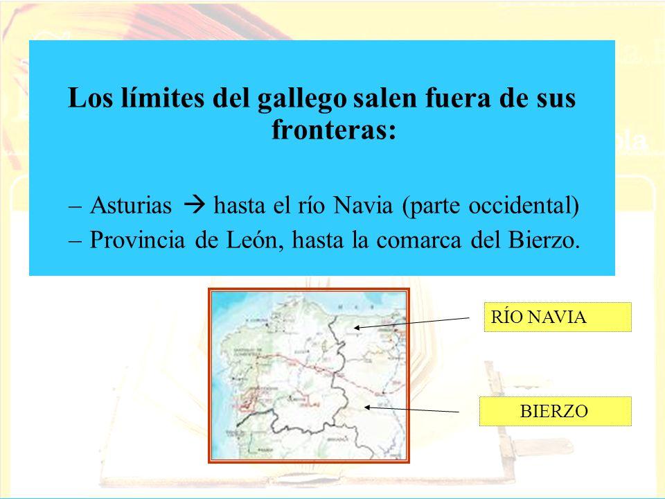 Los límites del gallego salen fuera de sus fronteras: –Asturias hasta el río Navia (parte occidental) –Provincia de León, hasta la comarca del Bierzo.