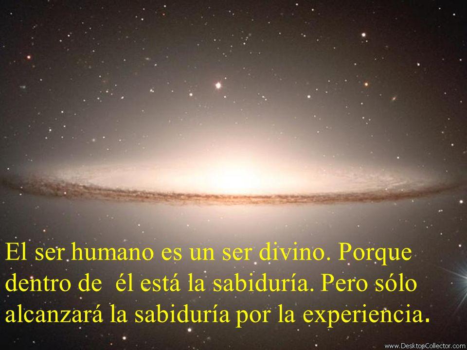El ser humano es un ser divino. Porque dentro de él está la sabiduría. Pero sólo alcanzará la sabiduría por la experiencia.