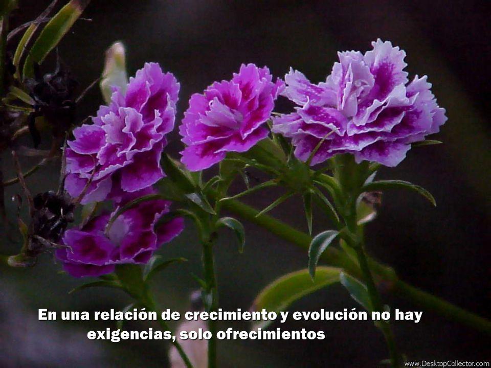 En una relación de crecimiento y evolución no hay exigencias, solo ofrecimientos
