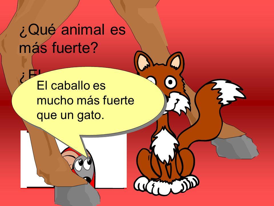 ¿Qué animal es más fuerte? ¿El gato o el caballo? El caballo es mucho más fuerte que un gato.