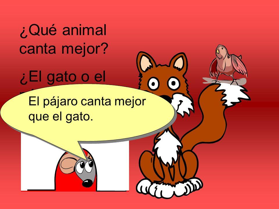 ¿Qué animal canta mejor? ¿El gato o el pájaro? El pájaro canta mejor que el gato.