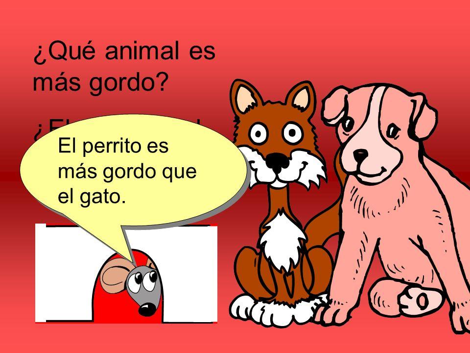 ¿Qué animal es más gordo? ¿El perrito o el gato? El perrito es más gordo que el gato.