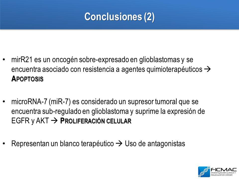Conclusiones (2) A POPTOSIS mirR21 es un oncogén sobre-expresado en glioblastomas y se encuentra asociado con resistencia a agentes quimioterapéuticos