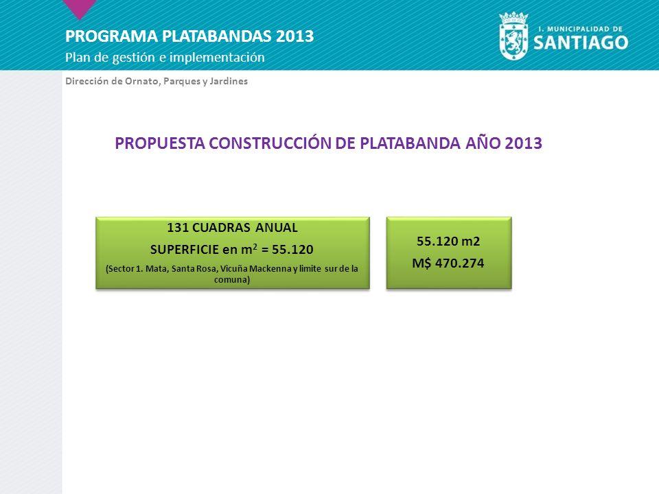 PROGRAMA PLATABANDAS 2013 Plan de gestión e implementación PROPUESTA CONSTRUCCIÓN DE PLATABANDA AÑO 2013 Dirección de Ornato, Parques y Jardines 131 C