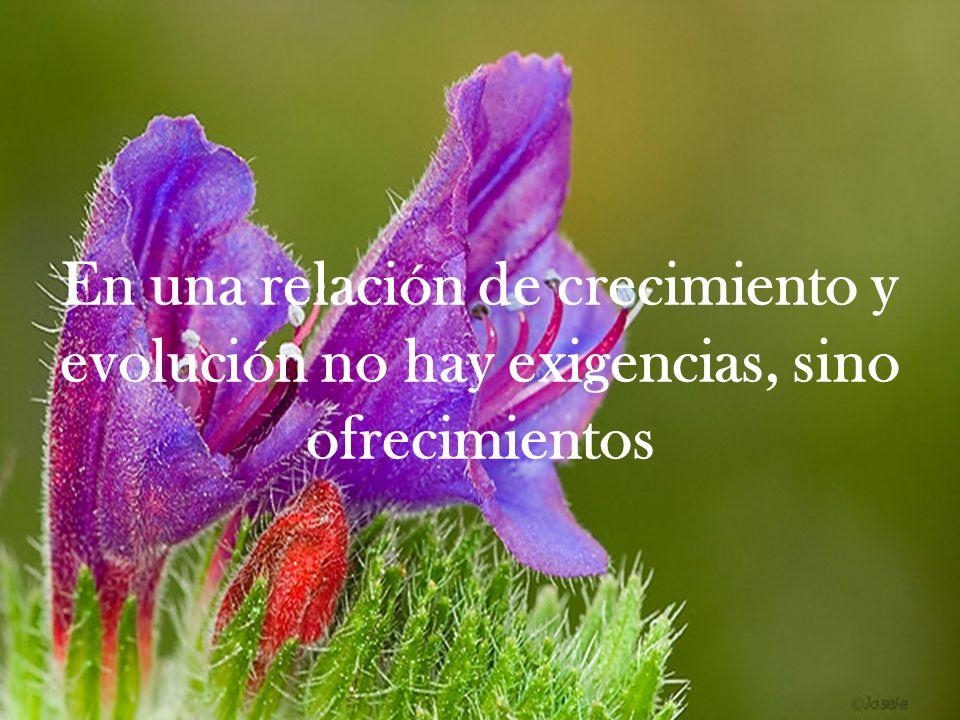 En una relación de crecimiento y evolución no hay exigencias, sino ofrecimientos