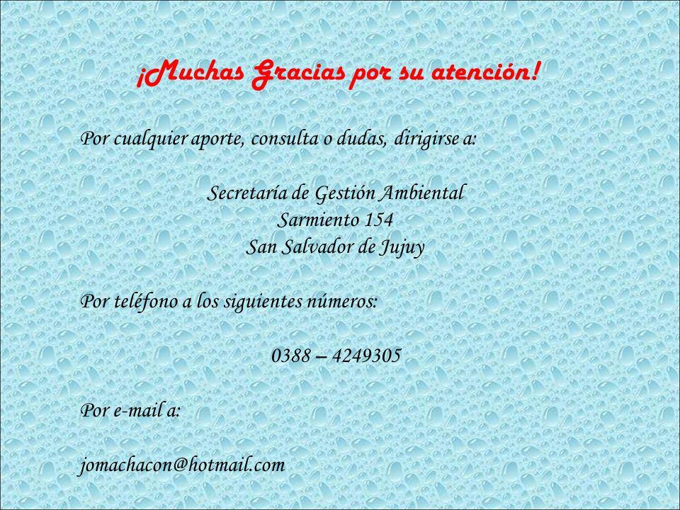 ¡Muchas Gracias por su atención! Por cualquier aporte, consulta o dudas, dirigirse a: Secretaría de Gestión Ambiental Sarmiento 154 San Salvador de Ju