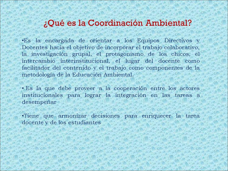 ¿Qué es la Coordinación Ambiental? Es la encargada de orientar a los Equipos Directivos y Docentes hacia el objetivo de incorporar el trabajo colabora