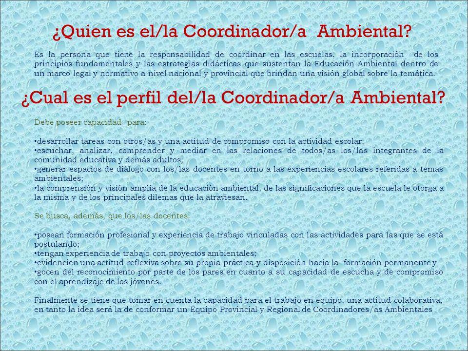 ¿Quien es el/la Coordinador/a Ambiental? Es la persona que tiene la responsabilidad de coordinar en las escuelas, la incorporación de los principios f