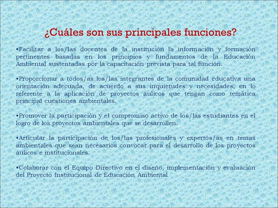 Facilitar a los/las docentes de la institución la información y formación pertinentes basadas en los principios y fundamentos de la Educación Ambienta