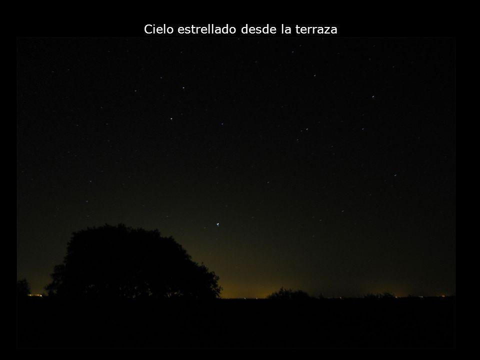 Cielo estrellado desde la terraza
