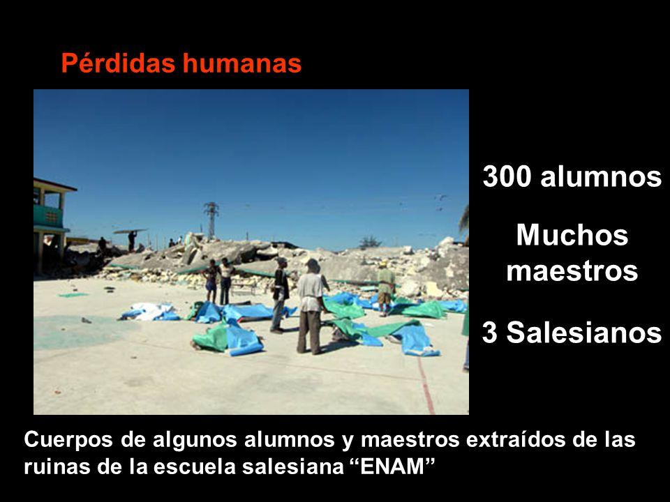 Pérdidas humanas 300 alumnos Muchos maestros 3 Salesianos Cuerpos de algunos alumnos y maestros extraídos de las ruinas de la escuela salesiana ENAM