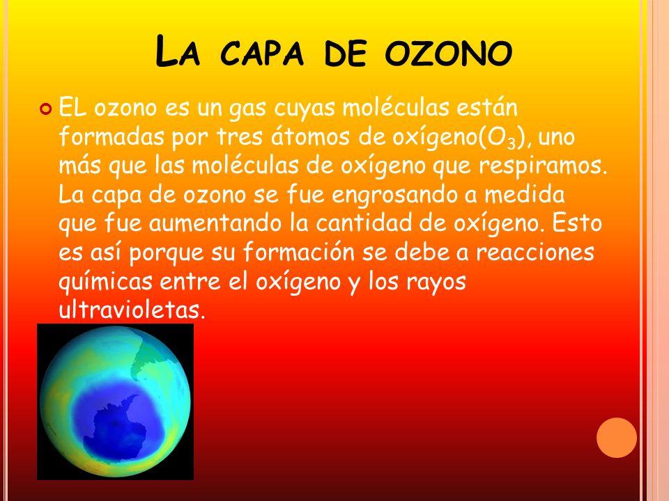 L A CAPA DE OZONO EL ozono es un gas cuyas moléculas están formadas por tres átomos de oxígeno(O 3 ), uno más que las moléculas de oxígeno que respira