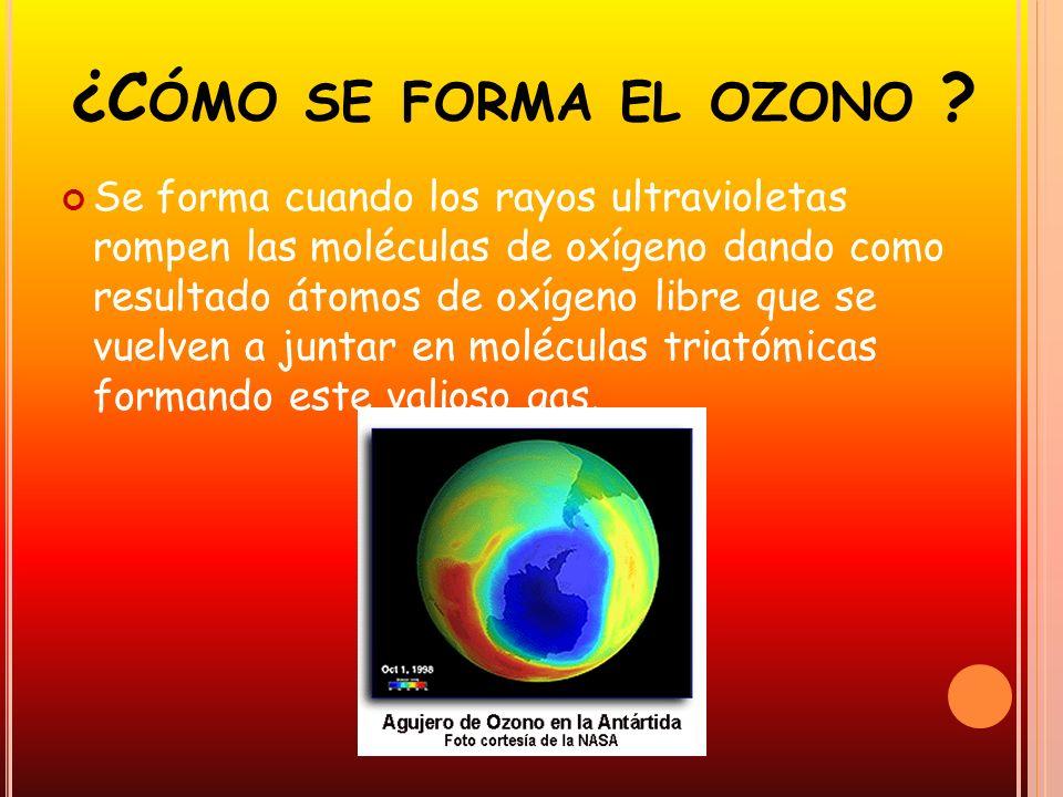 ¿C ÓMO SE FORMA EL OZONO ? Se forma cuando los rayos ultravioletas rompen las moléculas de oxígeno dando como resultado átomos de oxígeno libre que se