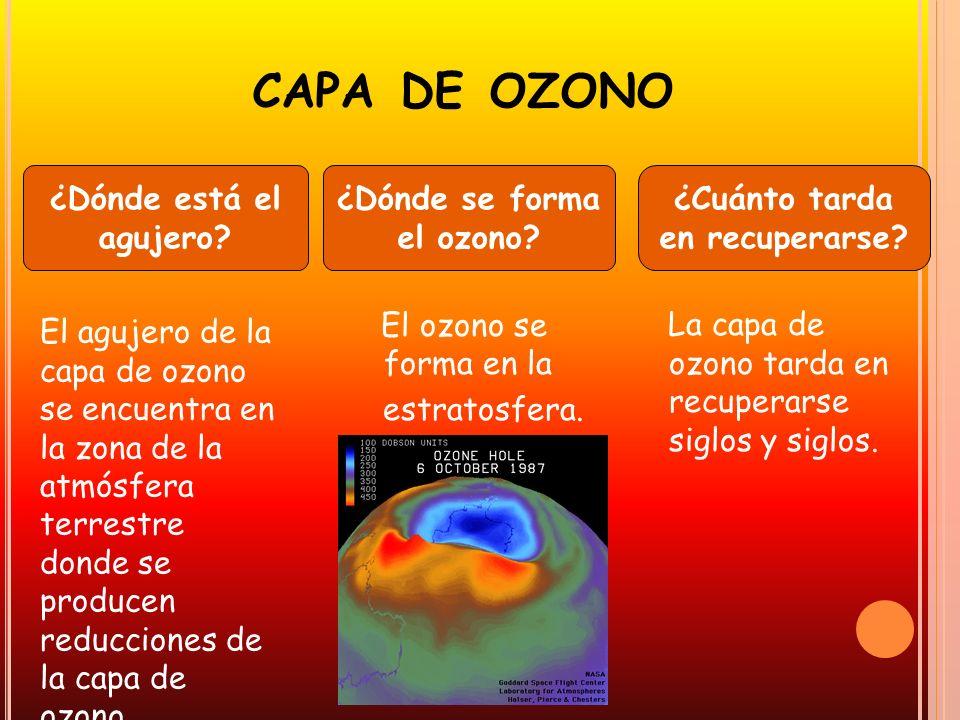 CAPA DE OZONO La capa de ozono tarda en recuperarse siglos y siglos. El ozono se forma en la estratosfera. ¿Cuánto tarda en recuperarse? ¿Dónde se for