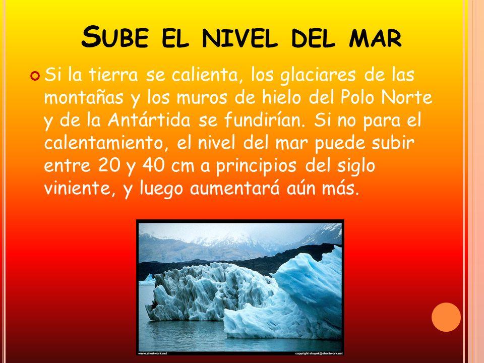 S UBE EL NIVEL DEL MAR Si la tierra se calienta, los glaciares de las montañas y los muros de hielo del Polo Norte y de la Antártida se fundirían. Si