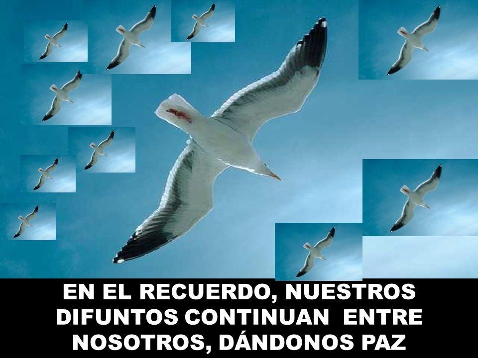 EN EL RECUERDO, NUESTROS DIFUNTOS CONTINUAN ENTRE NOSOTROS, DÁNDONOS PAZ