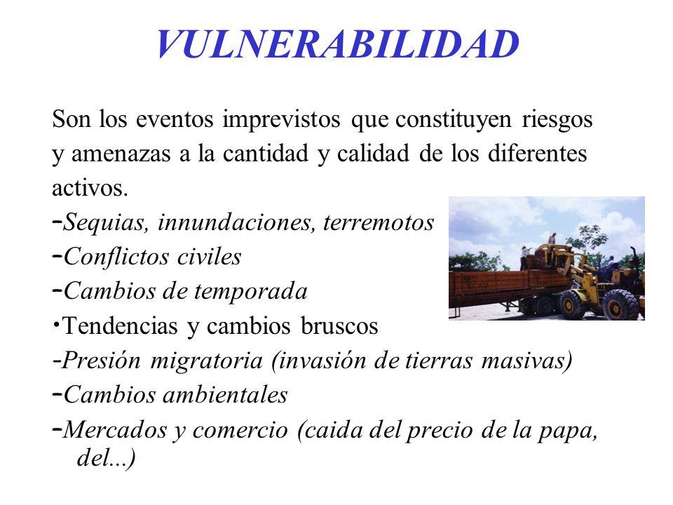 VULNERABILIDAD Son los eventos imprevistos que constituyen riesgos y amenazas a la cantidad y calidad de los diferentes activos. – Sequias, innundacio