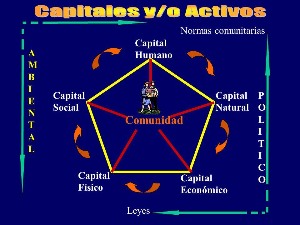 Comunidad Capital Social Capital Humano Capital Natural Capital Económico Capital Físico POLITICOPOLITICO AMBIENTALAMBIENTAL Leyes Normas comunitarias
