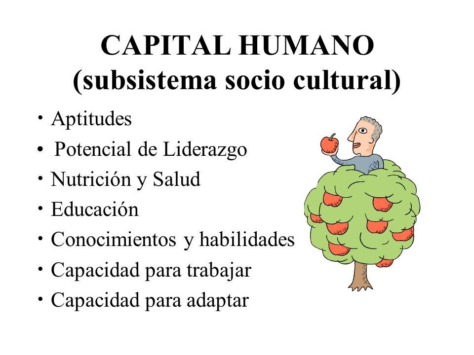 CAPITAL HUMANO (subsistema socio cultural) Aptitudes Potencial de Liderazgo Nutrición y Salud Educación Conocimientos y habilidades Capacidad para tra