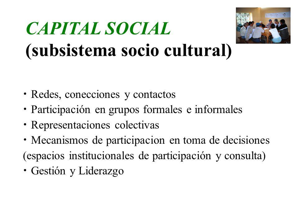 CAPITAL SOCIAL (subsistema socio cultural) Redes, conecciones y contactos Participación en grupos formales e informales Representaciones colectivas Me