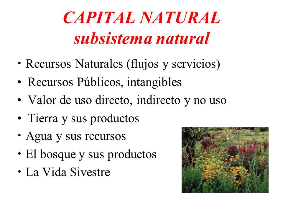 CAPITAL NATURAL subsistema natural Recursos Naturales (flujos y servicios) Recursos Públicos, intangibles Valor de uso directo, indirecto y no uso Tie