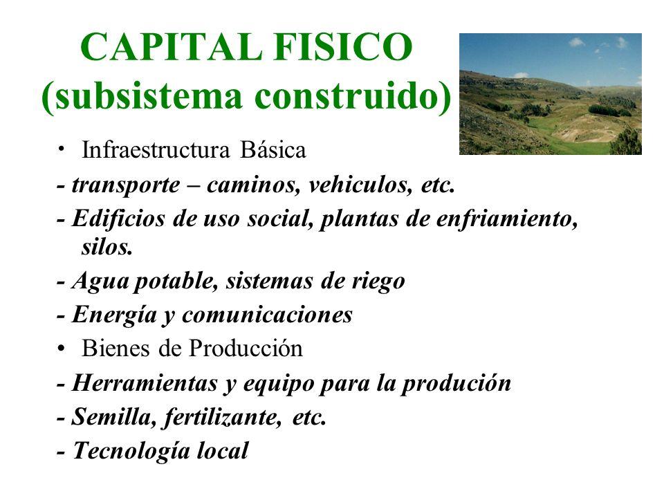 CAPITAL FISICO (subsistema construido) Infraestructura Básica - transporte – caminos, vehiculos, etc. - Edificios de uso social, plantas de enfriamien
