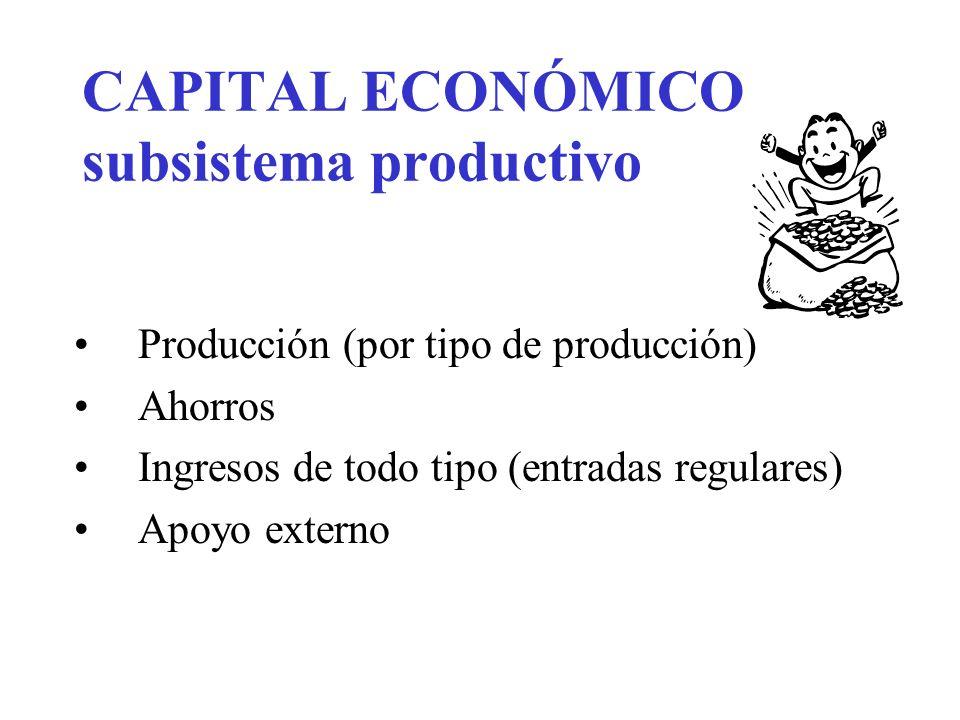 CAPITAL ECONÓMICO subsistema productivo Producción (por tipo de producción) Ahorros Ingresos de todo tipo (entradas regulares) Apoyo externo