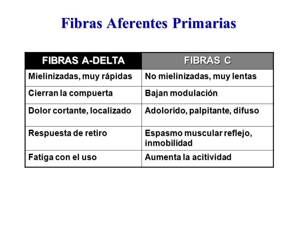 Fibras Aferentes Primarias FIBRAS A-DELTA FIBRAS C Mielinizadas, muy rápidas No mielinizadas, muy lentas Cierran la compuerta Bajan modulación Dolor c
