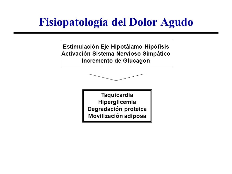 Fisiopatologia Del Dolor Agudo Fisiopatolog a Del Dolor Agudo