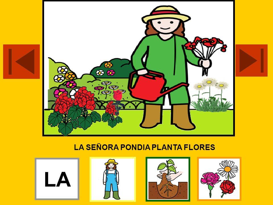 LA SEÑORA PONDIA PLANTA FLORES LA LOS LA