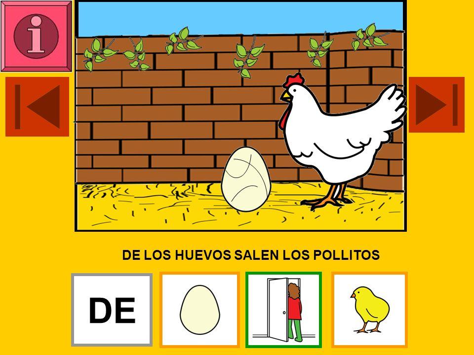 LA GALLINA INCUBA LOS HUEVOS LA
