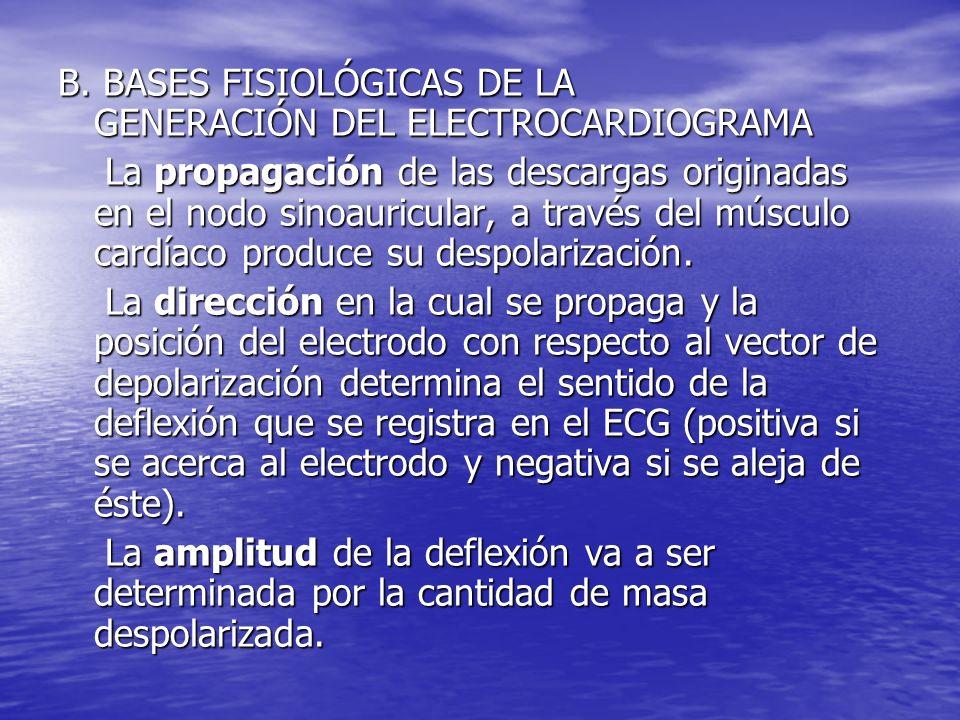 B. BASES FISIOLÓGICAS DE LA GENERACIÓN DEL ELECTROCARDIOGRAMA La propagación de las descargas originadas en el nodo sinoauricular, a través del múscul
