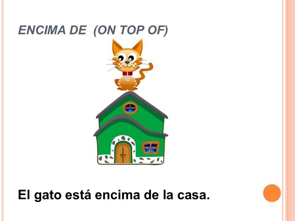 ENCIMA DE (ON TOP OF) El gato está encima de la casa.