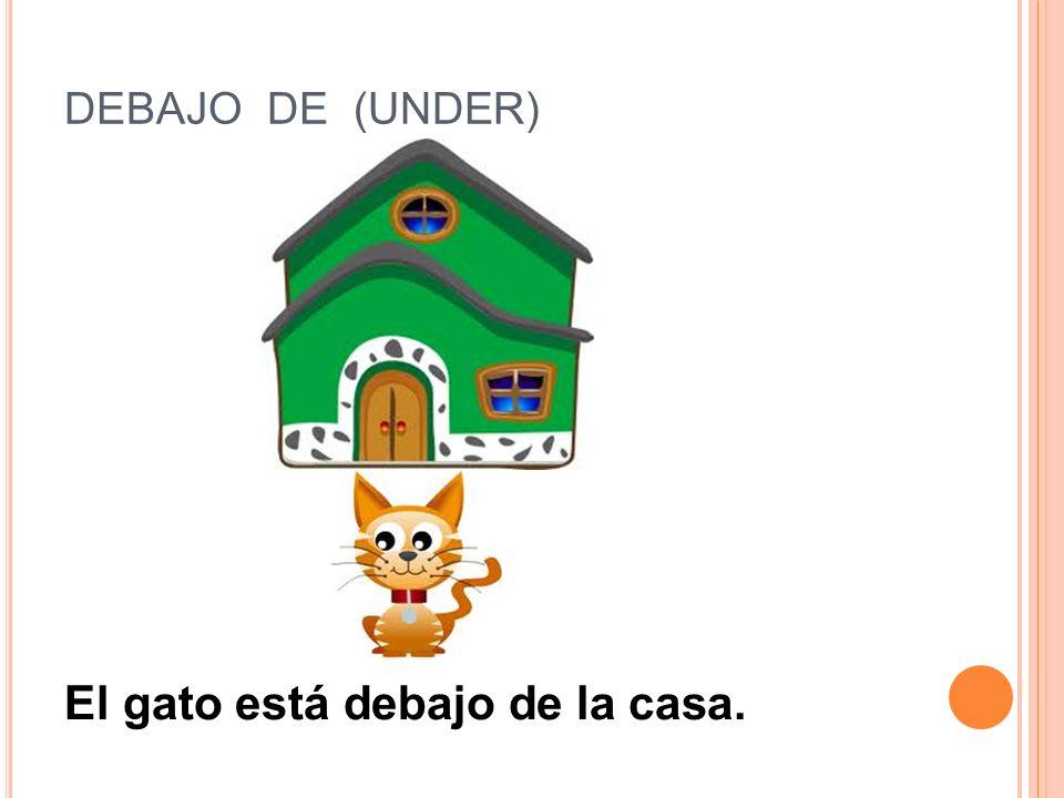 DELANTE DE (IN FRONT OF) El gato está delante de la casa.