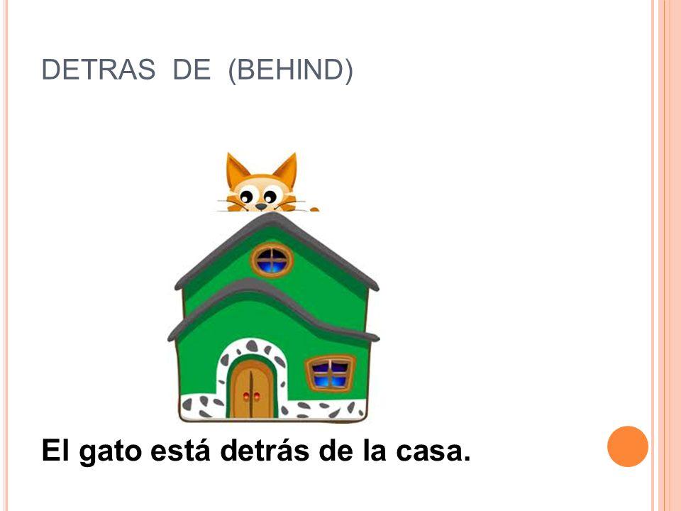 CERCA DE (CLOSE TO) El gato está cerca de la casa.