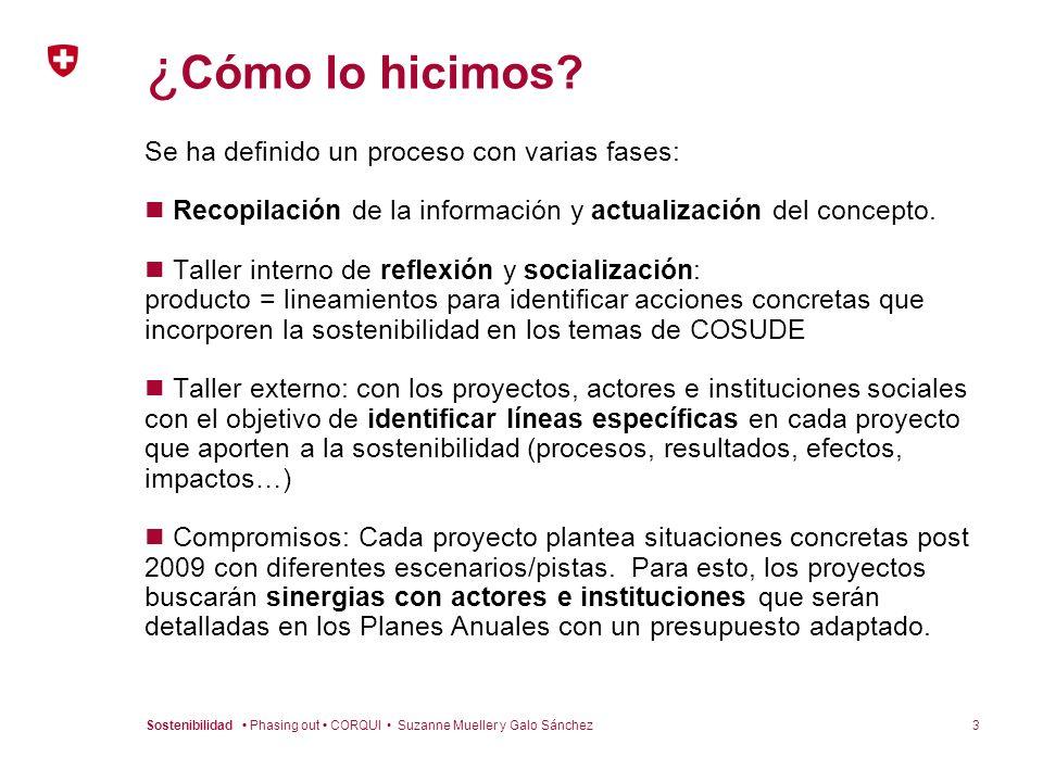 3Sostenibilidad Phasing out CORQUI Suzanne Mueller y Galo Sánchez ¿ Cómo lo hicimos? Se ha definido un proceso con varias fases: Recopilación de la in