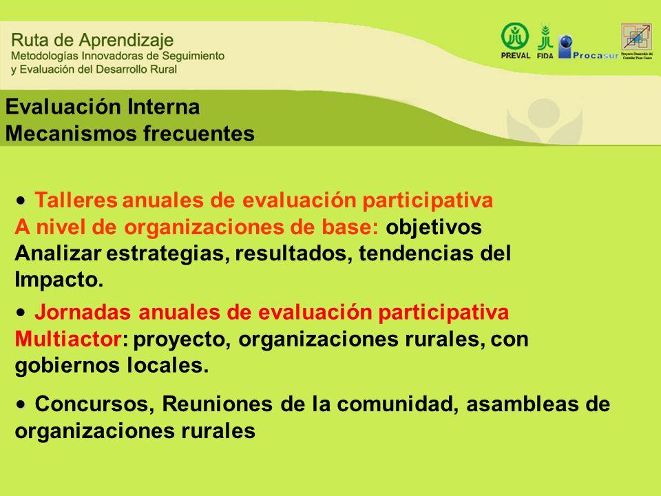 Evaluación Interna Mecanismos frecuentes Talleres anuales de evaluación participativa A nivel de organizaciones de base: objetivos Analizar estrategia