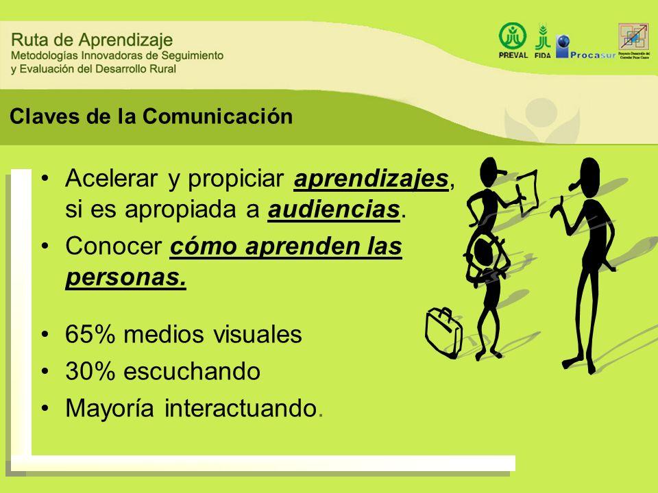 Formatos de Comunicación Informe o reporte final Resumen Ejecutivo diferentes audiencias: clásico, por temas, preguntas, etc.