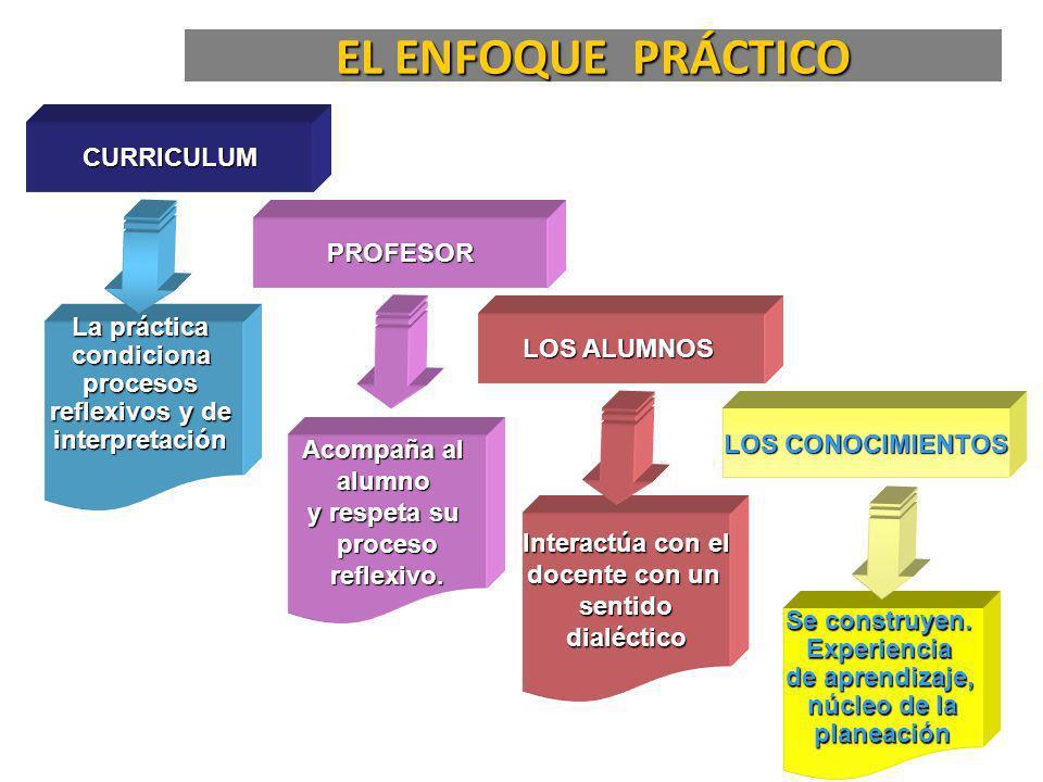 Competencia disciplinaria y profesional Hábito reflexivo, crítico e investigativo.