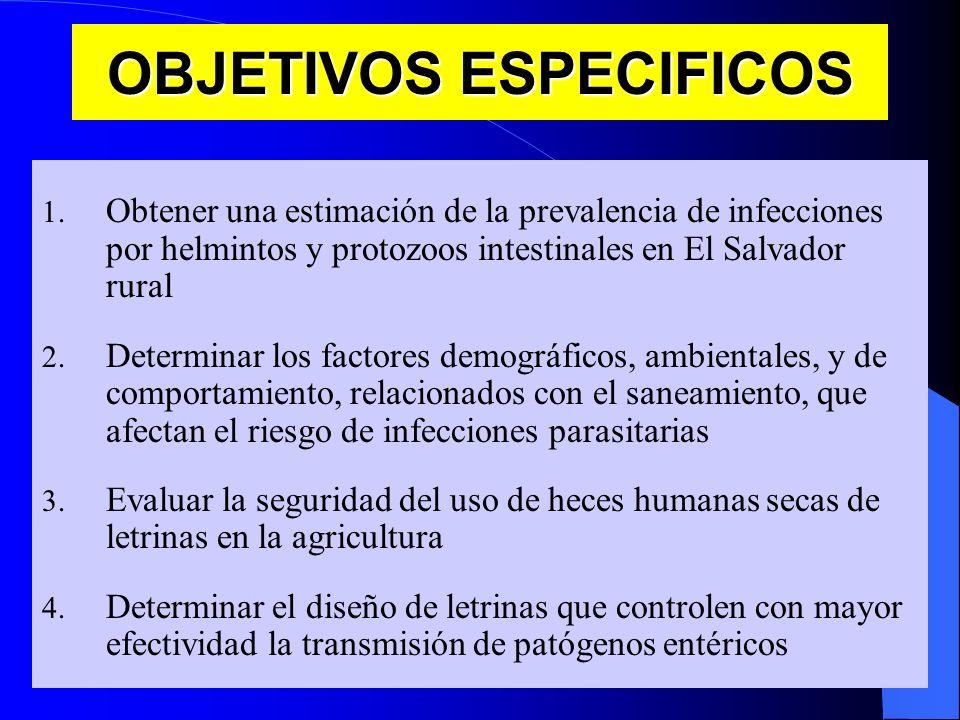 OBJETIVOS ESPECIFICOS 1. Obtener una estimación de la prevalencia de infecciones por helmintos y protozoos intestinales en El Salvador rural 2. Determ