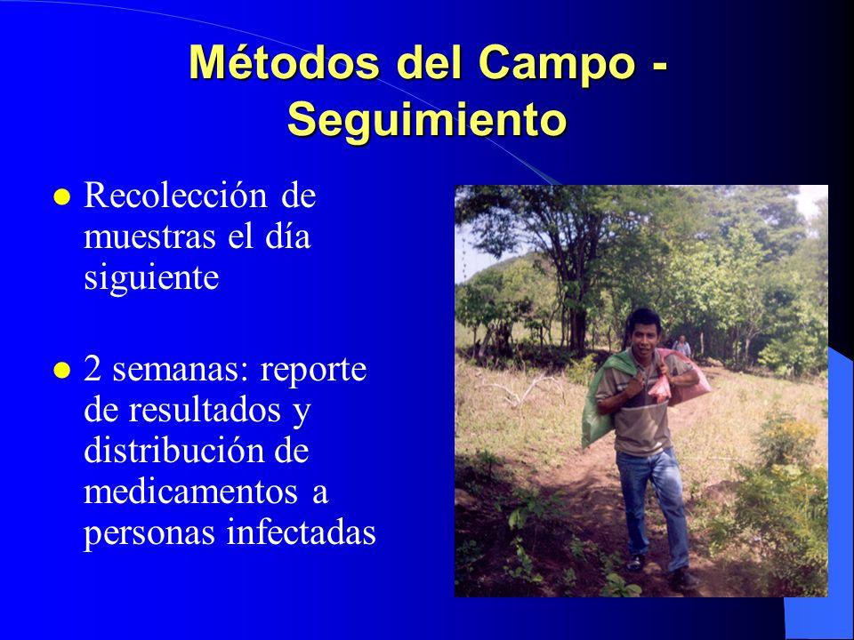 Métodos del Campo - Seguimiento Recolección de muestras el día siguiente 2 semanas: reporte de resultados y distribución de medicamentos a personas in