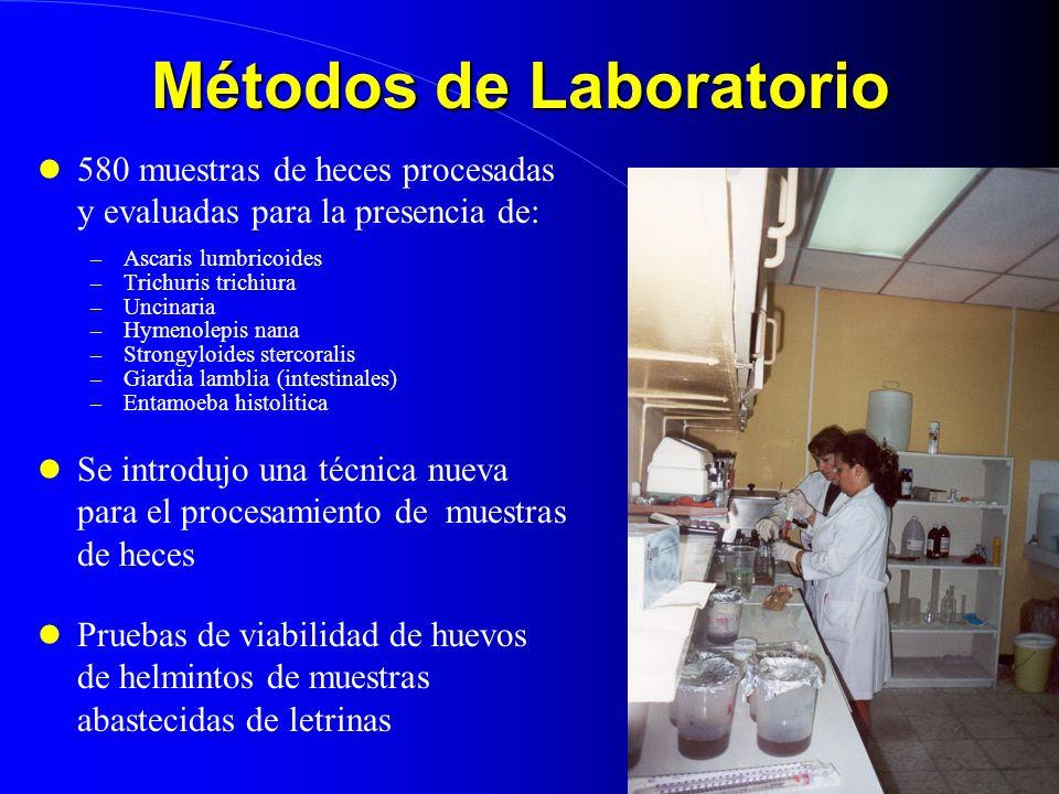 Métodos de Laboratorio 580 muestras de heces procesadas y evaluadas para la presencia de: – Ascaris lumbricoides – Trichuris trichiura – Uncinaria – H