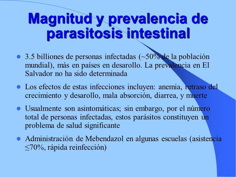 Magnitud y prevalencia de parasitosis intestinal 3.5 billiones de personas infectadas (~50% de la población mundial), más en países en desarollo. La p