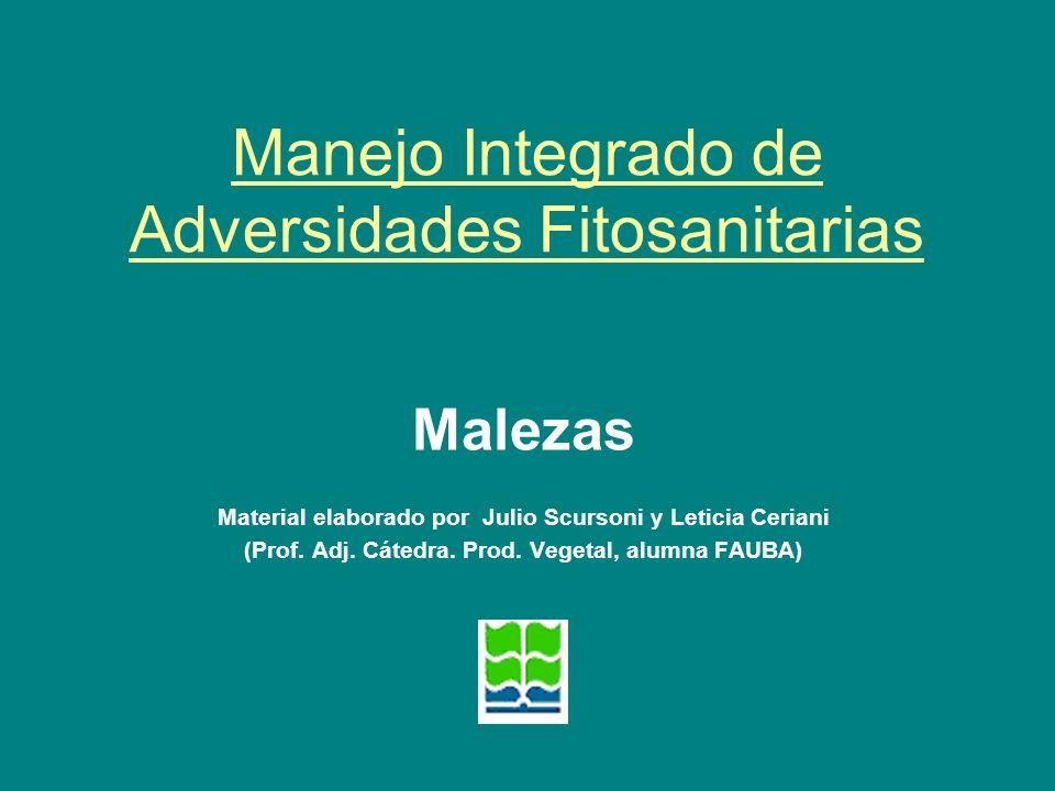 Manejo Integrado de Adversidades Fitosanitarias Malezas Material elaborado por Julio Scursoni y Leticia Ceriani (Prof. Adj. Cátedra. Prod. Vegetal, al