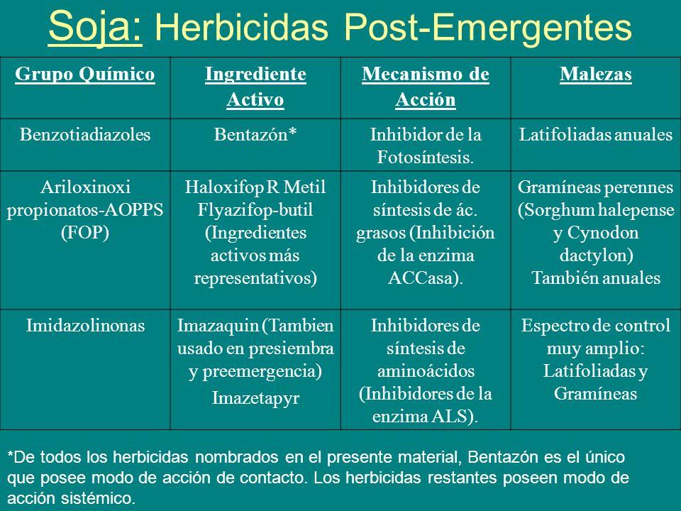 Soja: Herbicidas Post-Emergentes Grupo QuímicoIngrediente Activo Mecanismo de Acción Malezas BenzotiadiazolesBentazón*Inhibidor de la Fotosíntesis. La