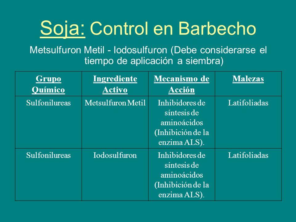Soja: Control en Barbecho Metsulfuron Metil - Iodosulfuron (Debe considerarse el tiempo de aplicación a siembra) Grupo Químico Ingrediente Activo Meca