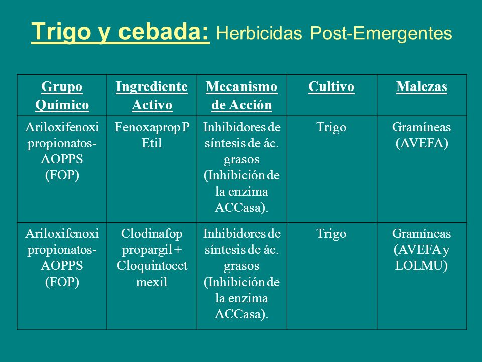 Trigo y cebada: Herbicidas Post-Emergentes Grupo Químico Ingrediente Activo Mecanismo de Acción CultivoMalezas Ariloxifenoxi propionatos- AOPPS (FOP) Fenoxaprop + Protector Inhibidores de síntesis de ác.