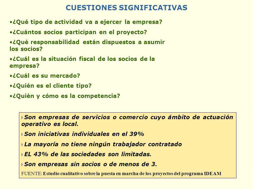 CUESTIONES SIGNIFICATIVAS ¿Qué tipo de actividad va a ejercer la empresa? ¿Cuántos socios participan en el proyecto? ¿Qué responsabilidad están dispue
