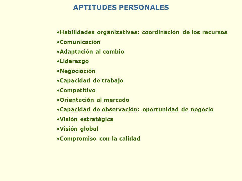 APTITUDES PERSONALES Habilidades organizativas: coordinación de los recursos Comunicación Adaptación al cambio Liderazgo Negociación Capacidad de trab
