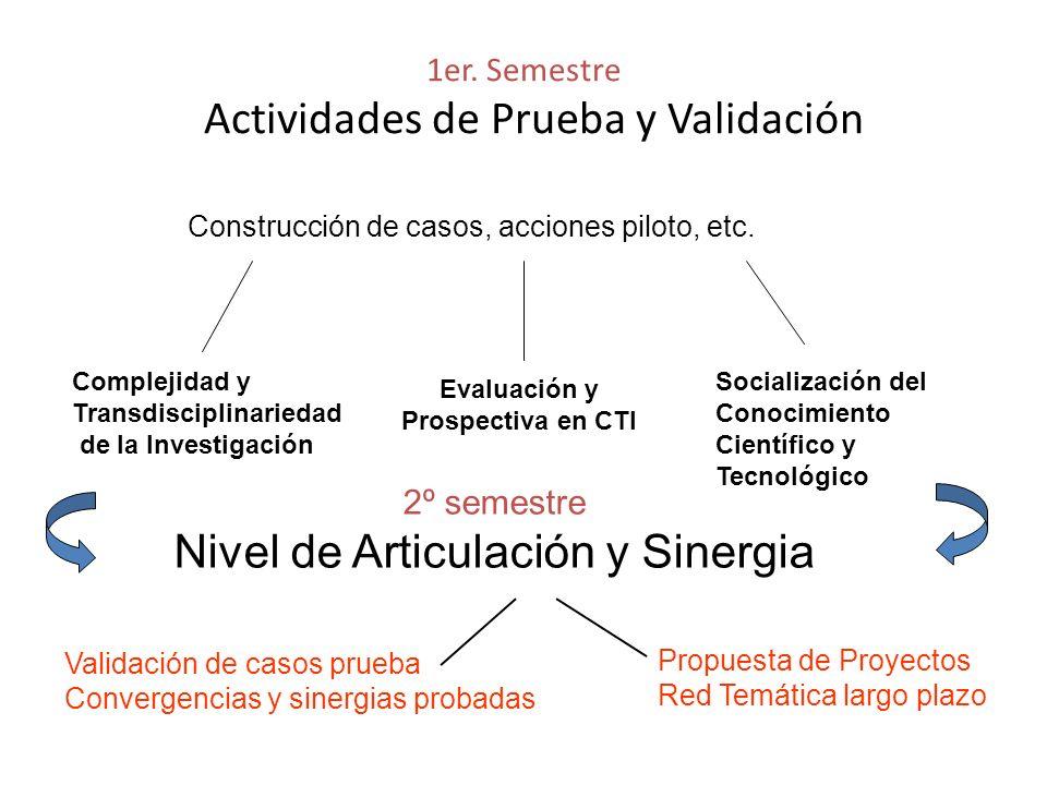1er. Semestre Actividades de Prueba y Validación Complejidad y Transdisciplinariedad de la Investigación Construcción de casos, acciones piloto, etc.